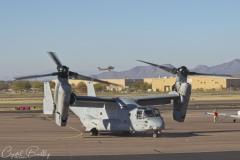 Osprey Visit4