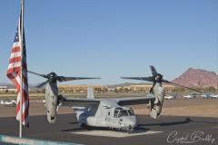 Osprey Visit