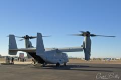 Osprey Visit2