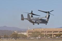 Osprey Visit3